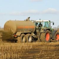 Nitrat im Trinkwasser durch Massentierhaltung